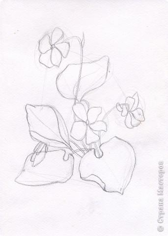 Рисуем цветы \часть1\ фото 3