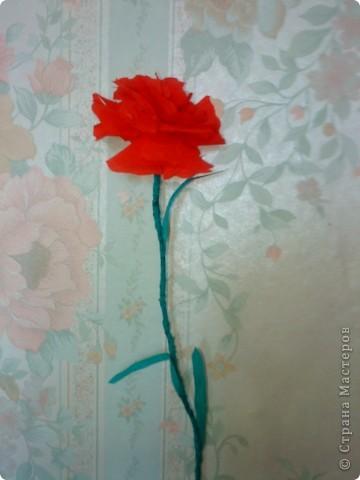 На демонстрации знакомые не сразу распознали, что это не живые цветы... Было забавно...   фото 2