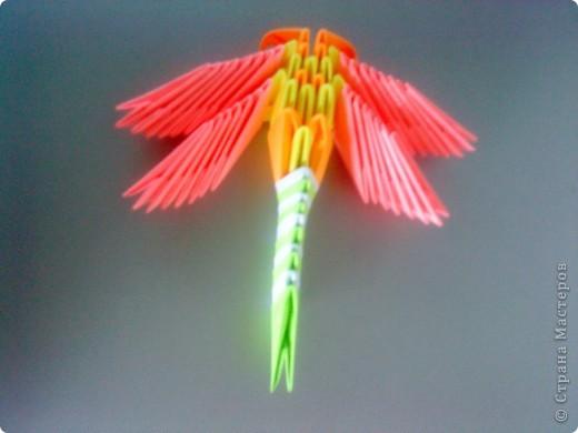 Оригами модульное: Мои стрекозки фото 2