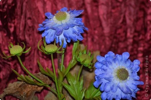Роза с лаком из кукурузного крахмала  фото 2