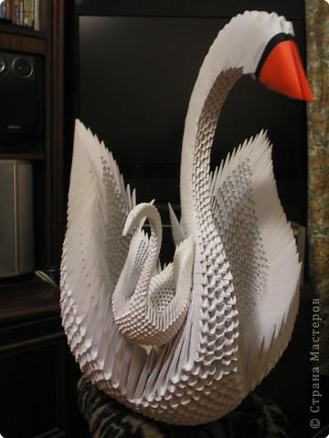 Модули для этой птички собраны из бумаги формата А4 фото 1