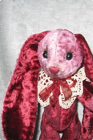 Зайчишка- Малышка. фото 2