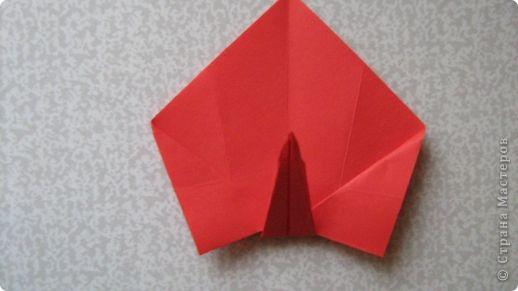Оригами: Калы фото 11