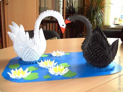 Оригами модульное: Красавцы - лебеди фото 2