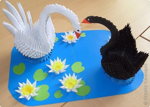 Оригами модульное: Красавцы - лебеди фото 1