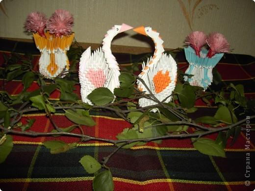 Оригами модульное: Сладкая парочка фото 1