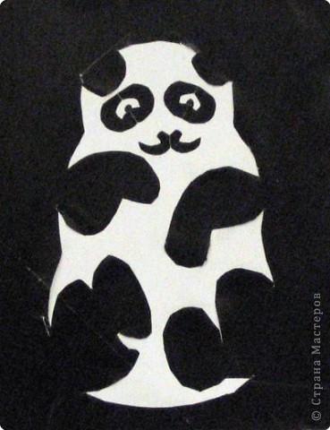 Лагутина Настя. Панда