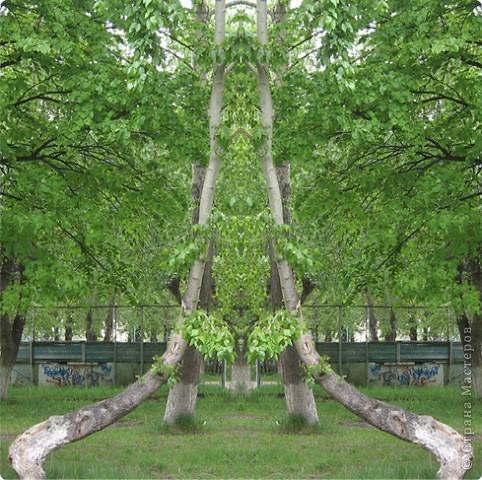 если отобразить часть фото симметрично, получаются интересные картинки фото 2