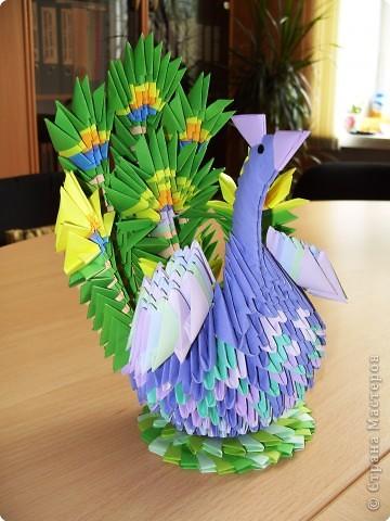 Оригами модульное: ПАВЛИН фото 1