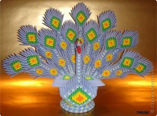 Из модулей схема павлина из оригами