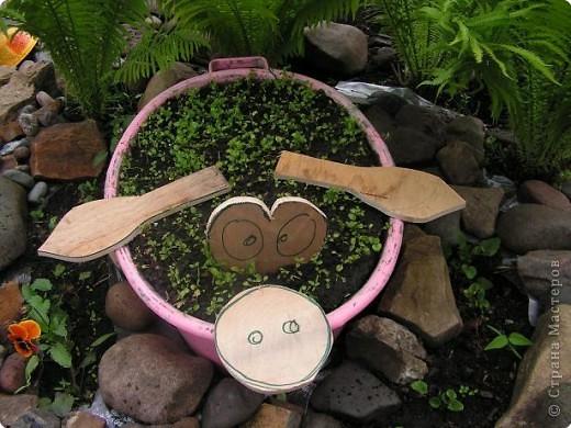 Предварительно тазик намыли и почистили... Засыпали земли и высадили  рассаду лобелии (когда зацветёт она должна быть розового цвета). фото 2