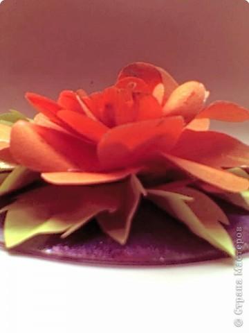 Роза, выполненная на диске фото 2