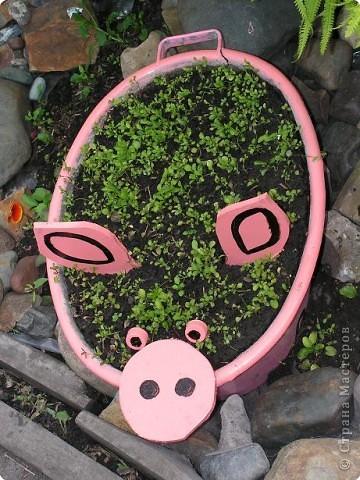 Предварительно тазик намыли и почистили... Засыпали земли и высадили  рассаду лобелии (когда зацветёт она должна быть розового цвета). фото 4