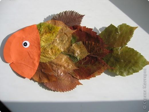 Аппликация: Сова и рыба фото 2
