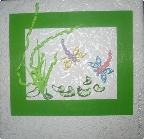 Стрекозы. фото 1