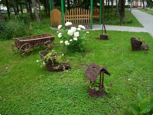 Интересные подсказки из Беловежской Пущи фото 17