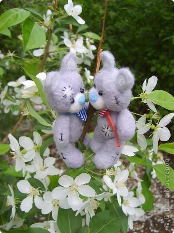 Медвежата родились ранней весной. А на фотосессию попали только в мае. А тут такая натура -  ландыши распускаются... фото 3