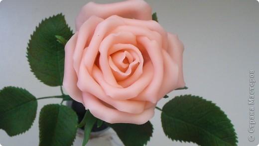 Роза с лаком из кукурузного крахмала  фото 4