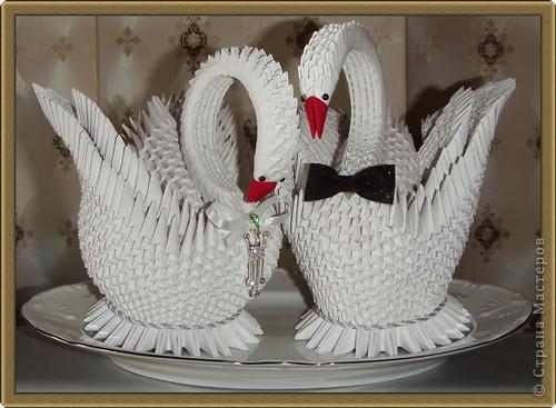 Вот и моя парочка свадебных лебедей прилетела.