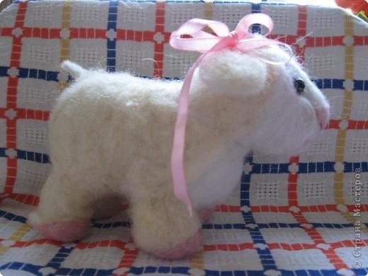 Фельдцевание: Овечка-милашка, или моя первая валяшка. фото 2