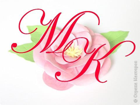 Бумагопластика, Моделирование: Бумагопластика. Мастер класс как сделать розу. фото 1