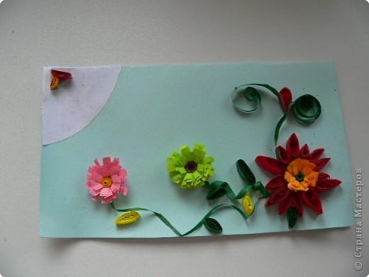 Цветы) фото 1