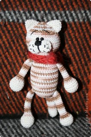 Мишка фото 3
