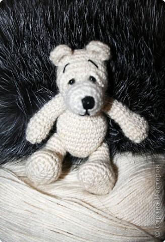 Мишка фото 2