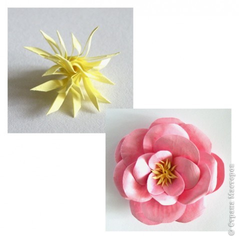 Бумагопластика, Моделирование: Бумагопластика. Мастер класс как сделать розу. фото 12