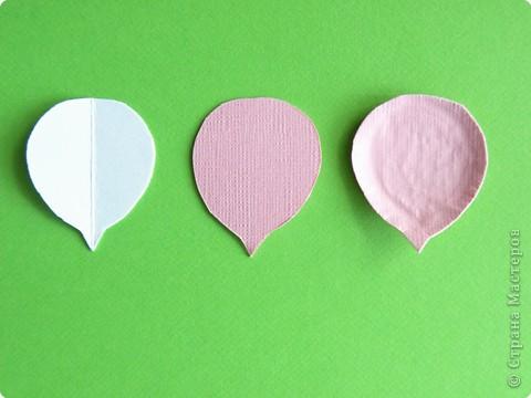 Бумагопластика, Моделирование: Бумагопластика. Мастер класс как сделать розу. фото 6