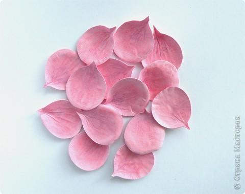 Бумагопластика, Моделирование: Бумагопластика. Мастер класс как сделать розу. фото 9