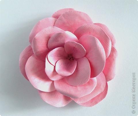 Бумагопластика, Моделирование: Бумагопластика. Мастер класс как сделать розу. фото 11