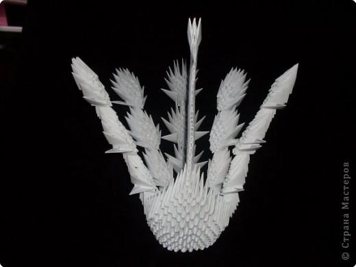 Оригами модульное: Птица! фото 2