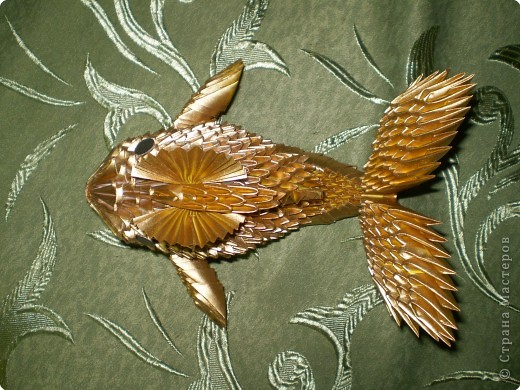 Золотая рыбка фото 2