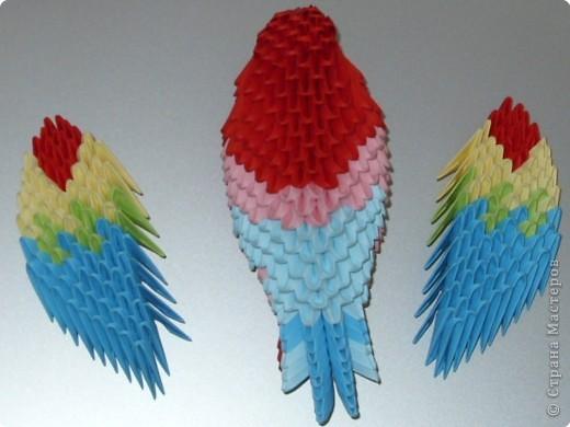 Мастер-класс Оригами китайское модульное МК на изготовление попугайчика Бумага фото 75