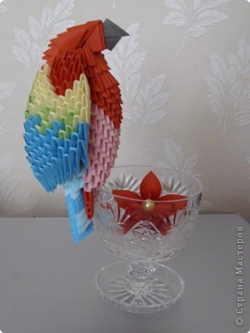 Мастер-класс Оригами китайское модульное МК на изготовление попугайчика Бумага фото 76