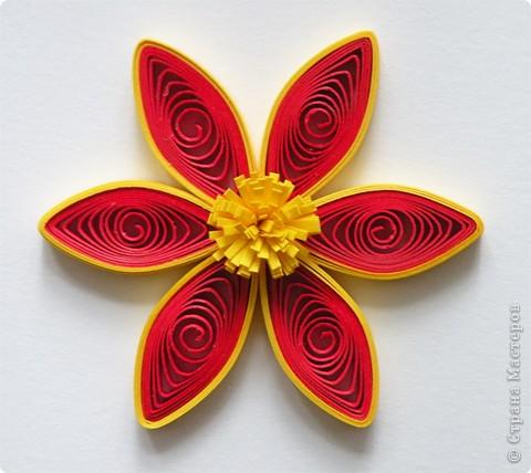 Квиллинг: Мастер класс: как сделать красивый цветок. фото 20