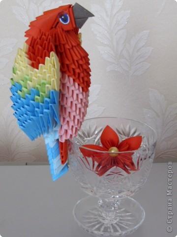 Мастер-класс Оригами китайское модульное МК на изготовление попугайчика Бумага фото 77
