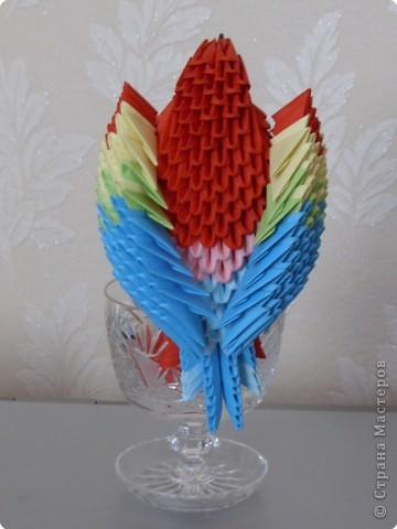 Мастер-класс Оригами китайское модульное МК на изготовление попугайчика Бумага фото 78
