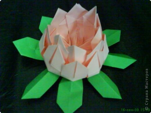 Оригами: ЛИЛИИ фото 1