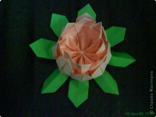 Оригами: ЛИЛИИ фото 2