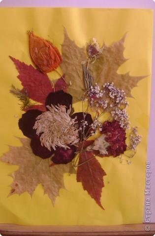 Вот и осень пришла, а с ней и великое множество материалов, из которых можно сделать поделки. Это первые поделки с моей мамой. Я к сожалению сломал руку, сижу дома и её разрабатываю. фото 2