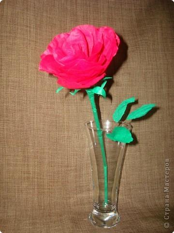 Бумагопластика: И снова роза