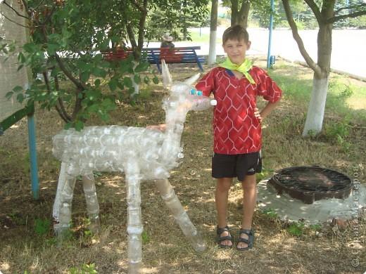 """Извините, ну очень хочется показать мини-зоопарк, сын говорил с гордостью: """"У нас даже есть зоопарк"""". фото 2"""