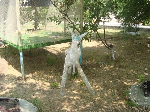 Маленький оленёнок стоит перед входом в мини-зоопарк фото 1