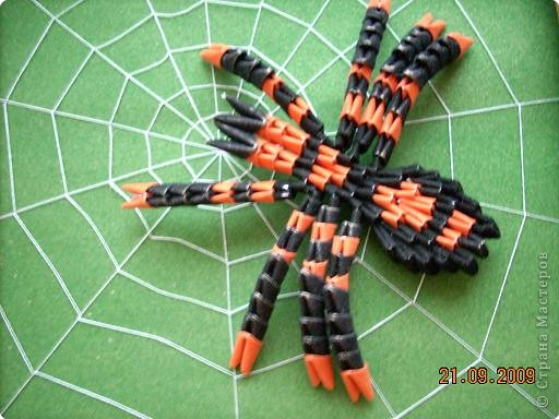 Жилище для паука | Страна