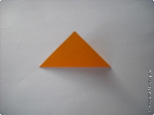 МК.Разноцветные космеи. фото 3