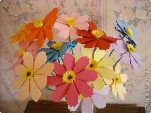МК.Разноцветные космеи. фото 1