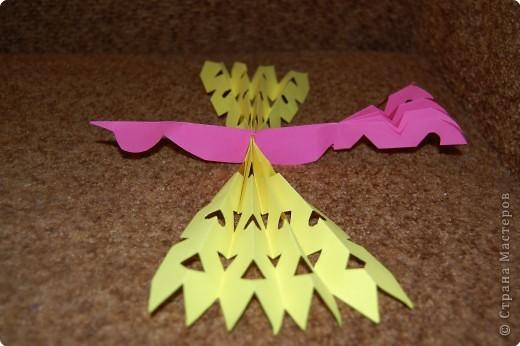 сказочная птица фото 1