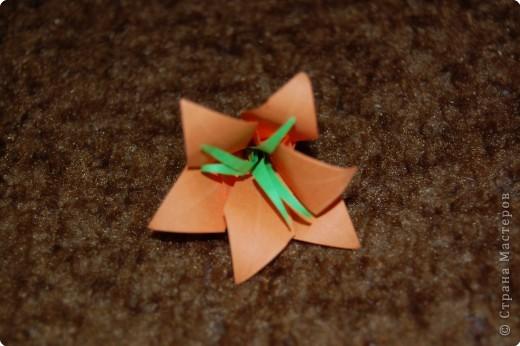 это 6 лепестковая лилия в коробочке оригами фото 2